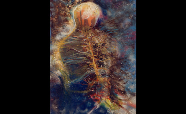Bio-Tech-Art-Daphna_Margolin-016